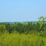 Zamek Ogrodzieniec - Skała Rzędowa - Spacer po Jurze