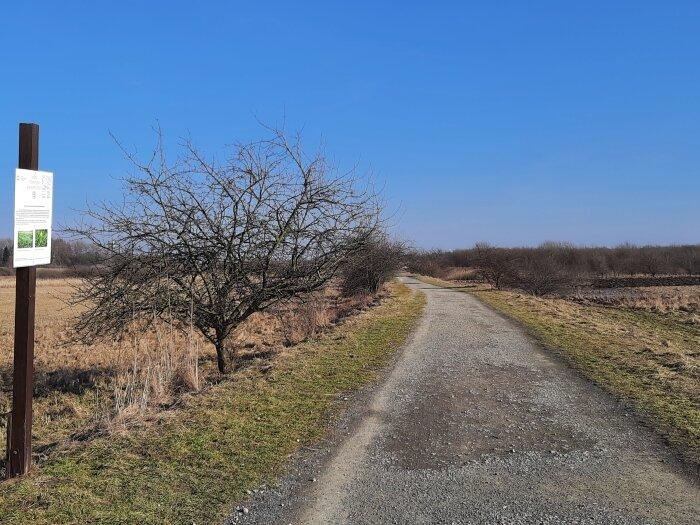 Łąki Nowohuckie