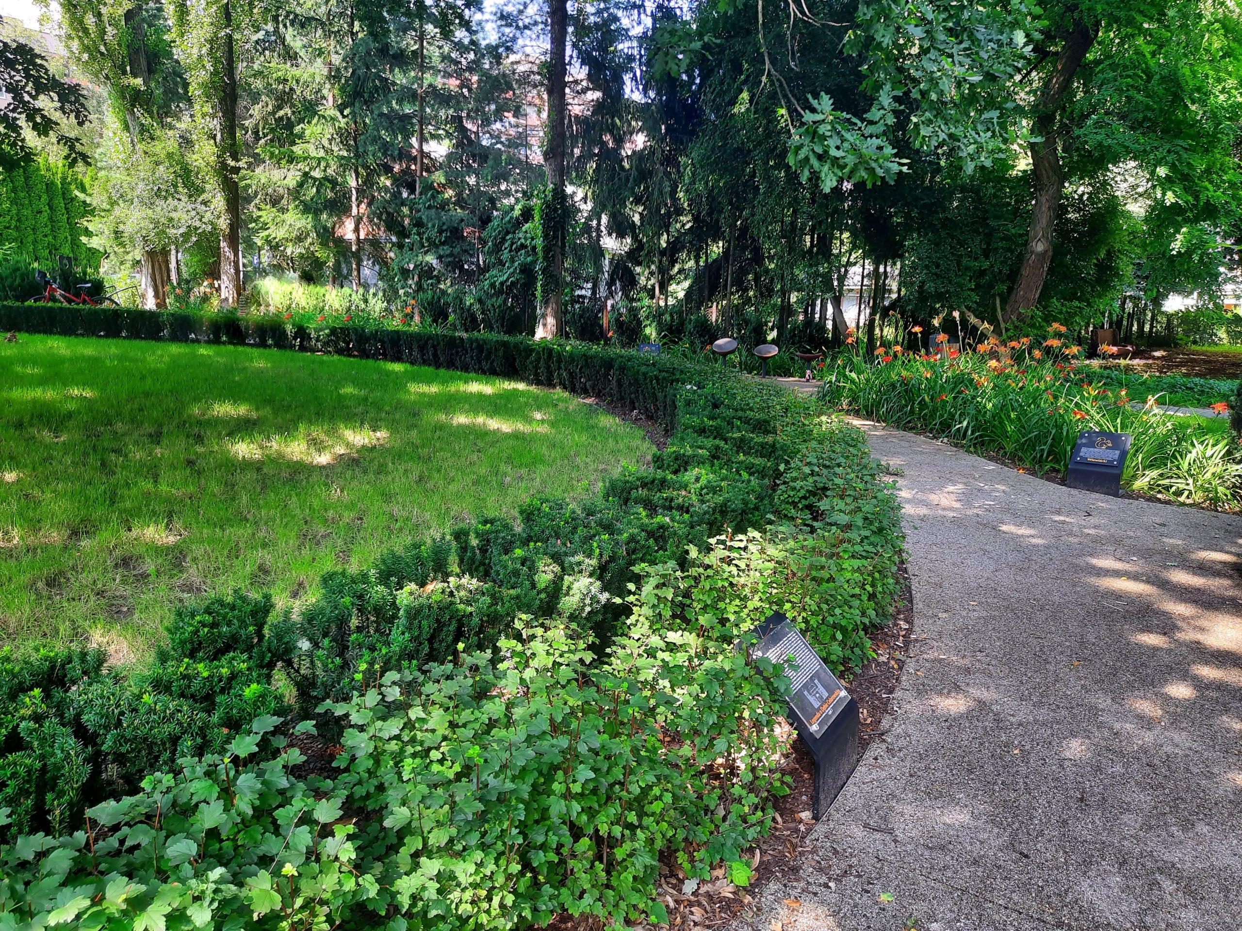 Dębowy Ogród Krakowian, ul. Celarowska